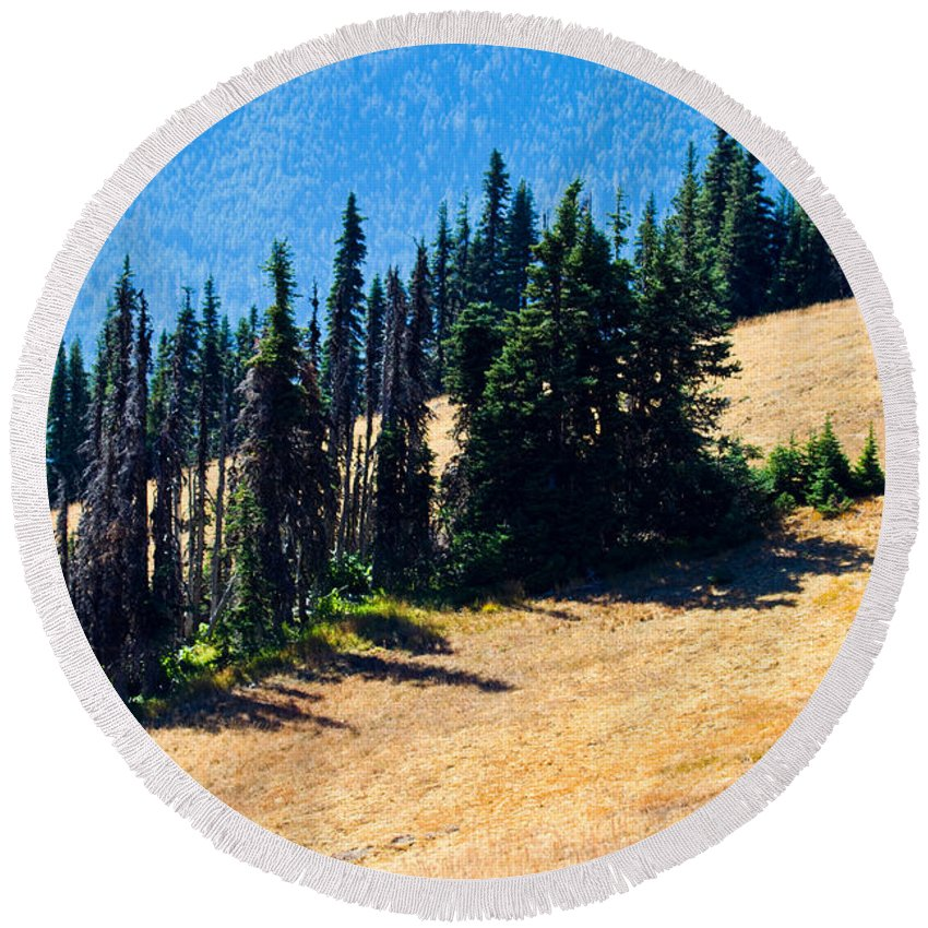 Mountainside Round Beach Towel featuring the photograph Conifer Clusters by Marie Jamieson