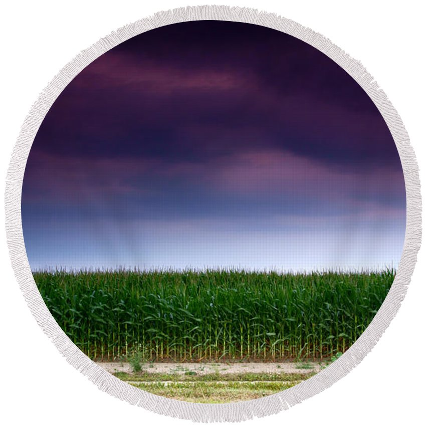 Corn Round Beach Towel featuring the photograph Corn Row by Cale Best