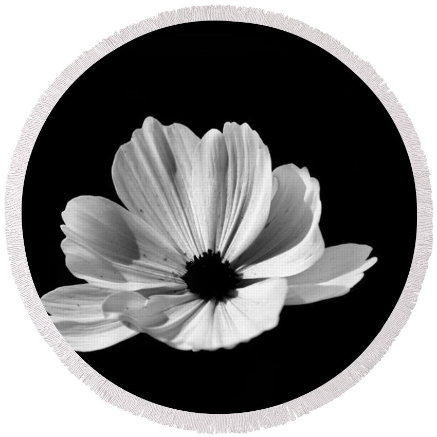 Flower Round Beach Towel featuring the photograph Cosmo Black And White by Donna Brown