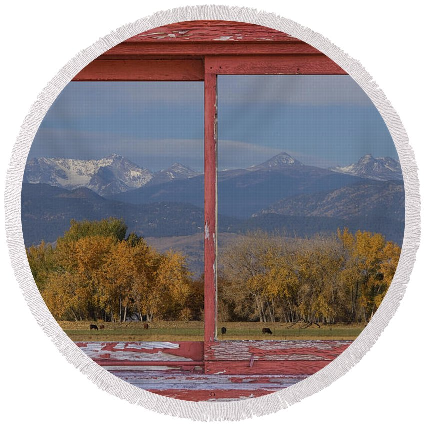 'window Frame Art' Round Beach Towel featuring the photograph Cows Life Colorado Autumn Rocky Mountains Picture Window Art by James BO Insogna