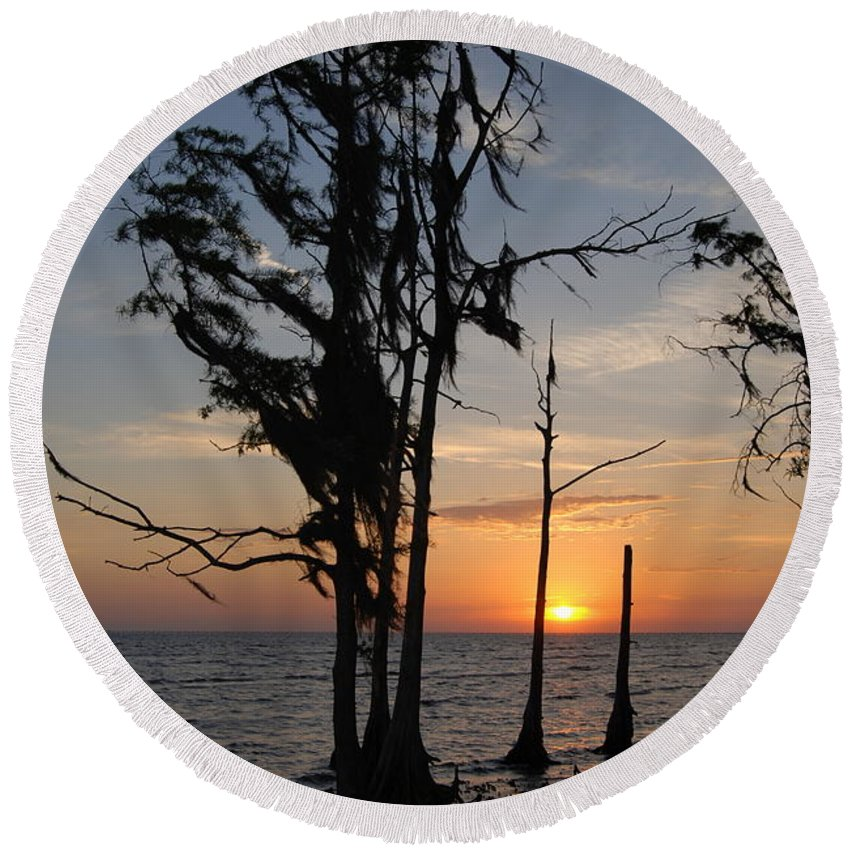 Cypress Round Beach Towel featuring the photograph Cypress Sunset by Beth Gates-Sully