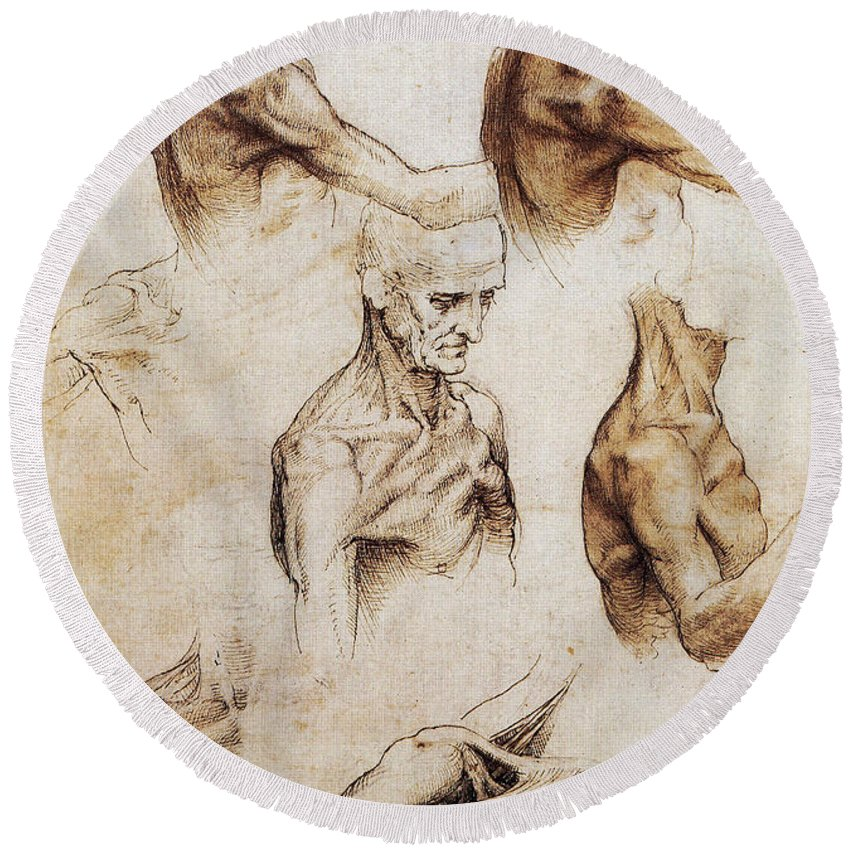 Da Vinci Anatomical Drawings Round Beach Towel for Sale by Science ...