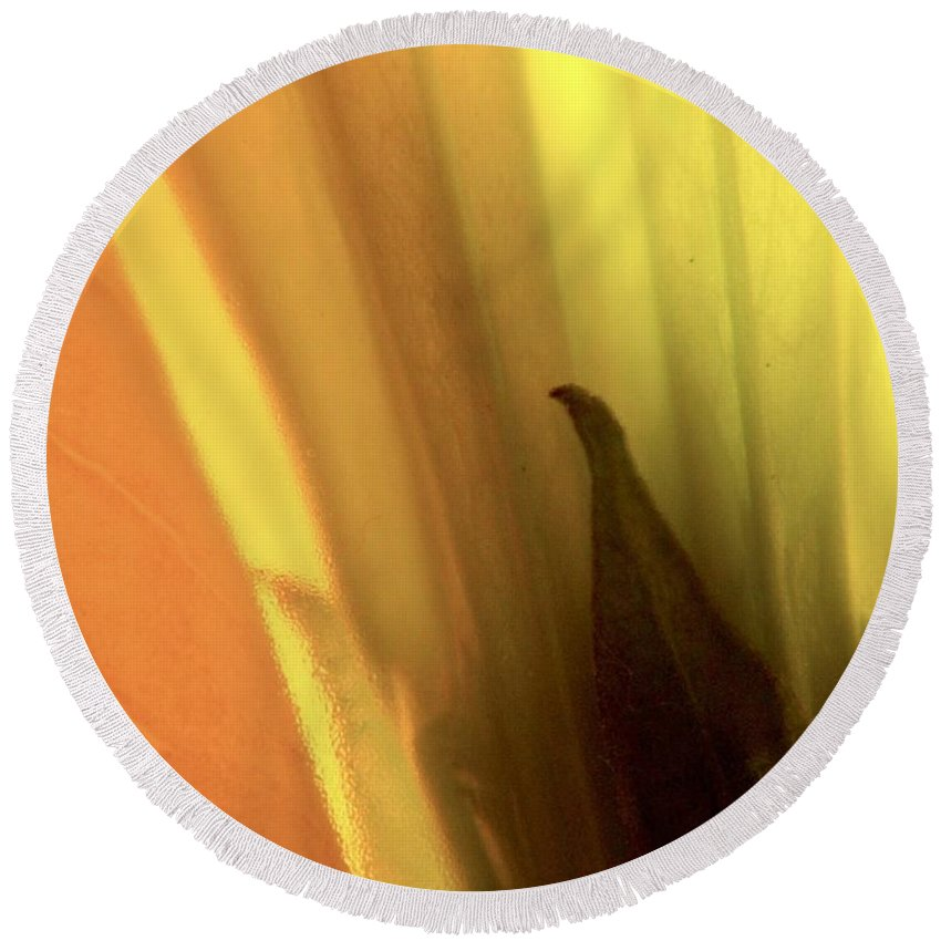 Datura Round Beach Towel featuring the photograph Datura Transparency by Chris Berry
