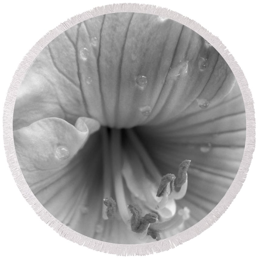 Day Lily Round Beach Towel featuring the photograph Day Lily Flower In Black And White by Jennie Marie Schell