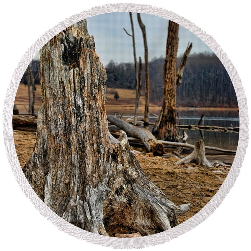 Dead Wood Round Beach Towel featuring the photograph Dead Wood by Paul Ward