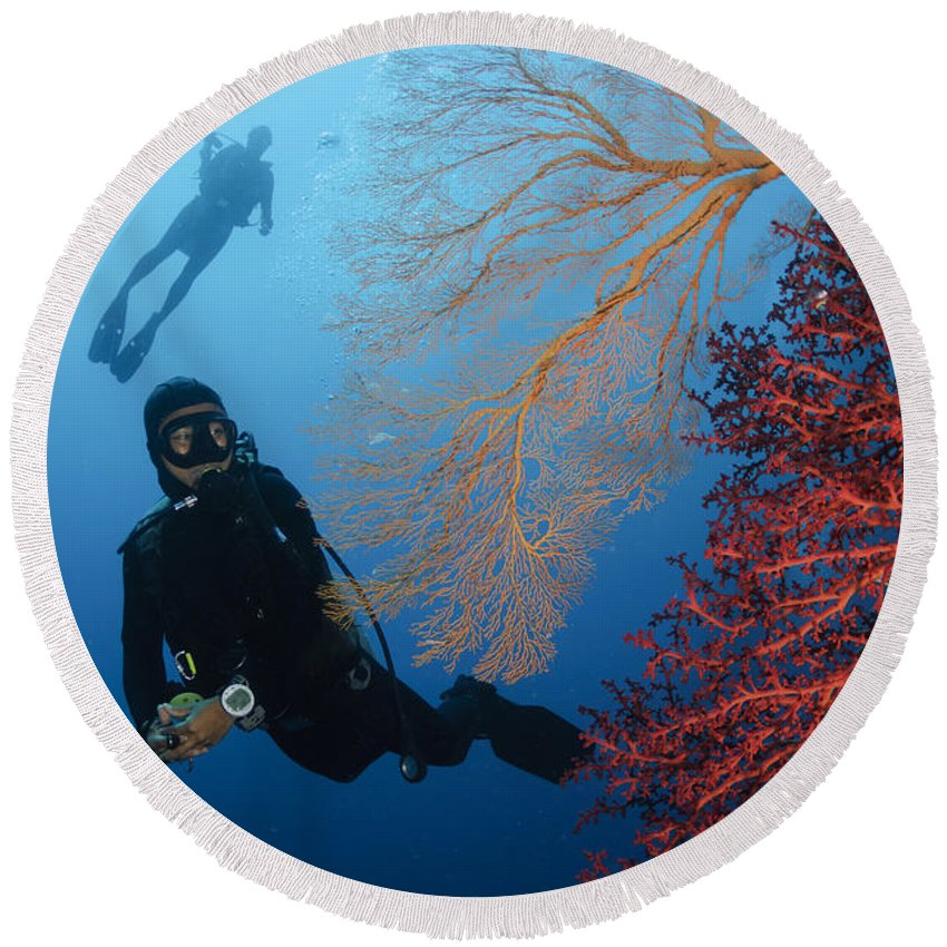 Diver Round Beach Towel featuring the photograph Divers Swimming By Sea Fans, Indonesia by Todd Winner