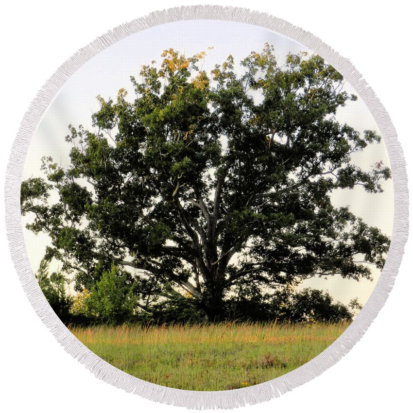 Landscape Round Beach Towel featuring the photograph Dream Tree by Jennifer Stockman
