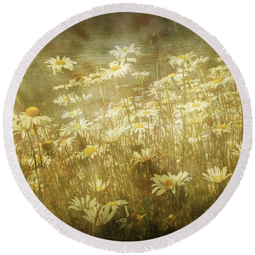 Art Round Beach Towel featuring the photograph Dreamy Daises by Randall Nyhof
