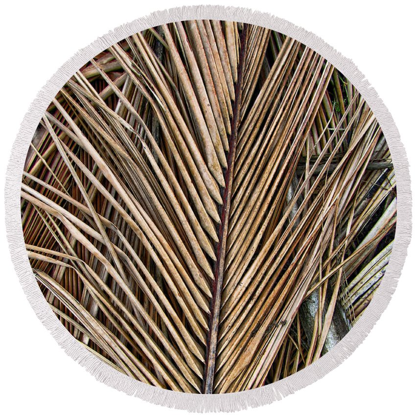 Branch Round Beach Towel featuring the photograph Dried Palm Fronds by Mark Sellers
