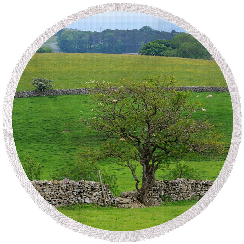 Tree Round Beach Towel featuring the photograph Dry Stone Wall And Twisted Tree by Louise Heusinkveld