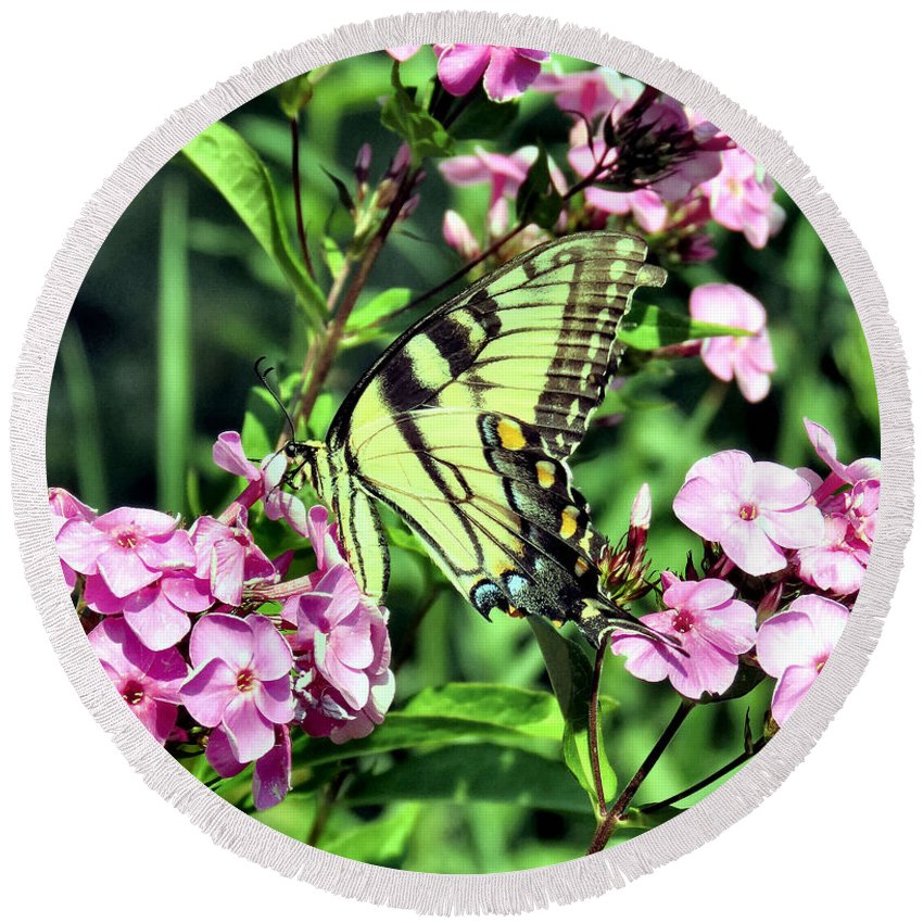 Eastern Round Beach Towel featuring the photograph Eastern Tiger Swallowtail by Art Dingo