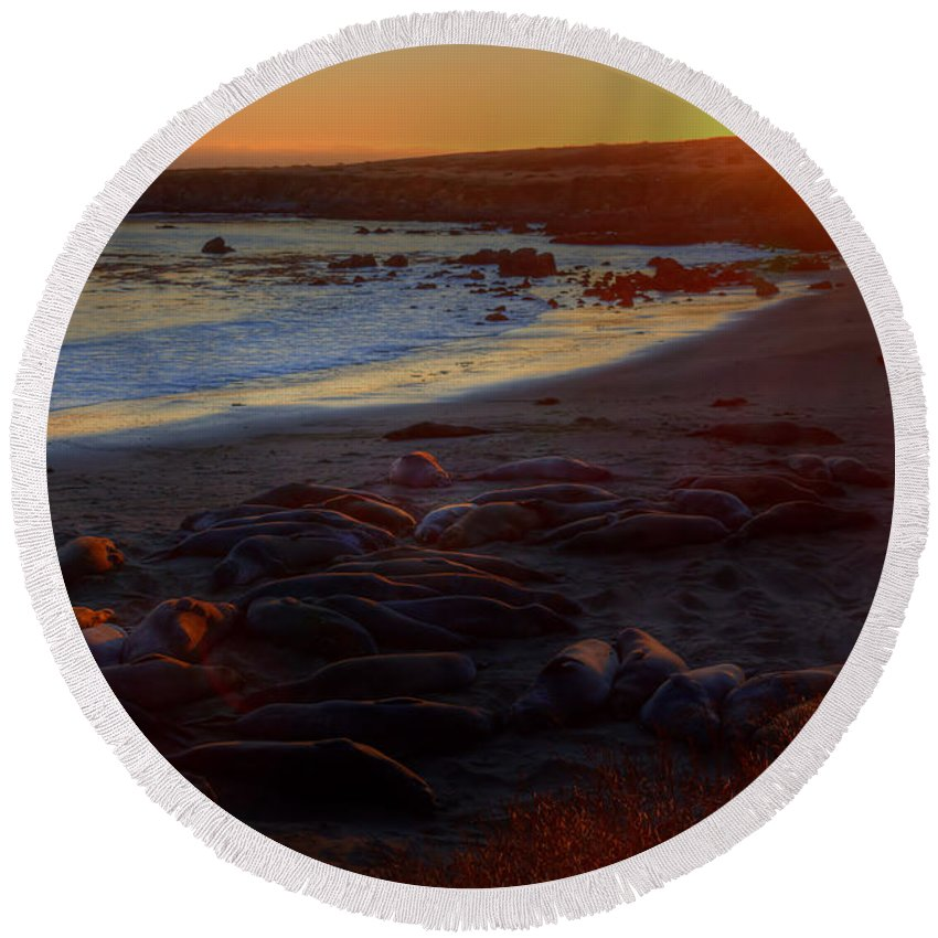 San Simeon Round Beach Towel featuring the photograph Elephant Rocks by James Anderson