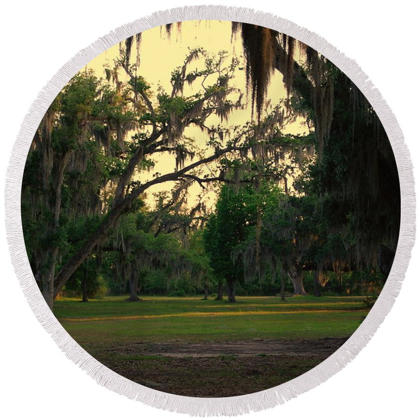 Oaks Round Beach Towel featuring the photograph Evening In The Mossy Oaks by Beth Gates-Sully