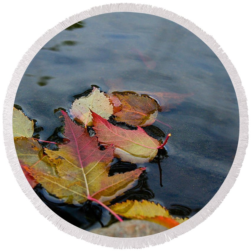 Outdoors Round Beach Towel featuring the photograph Fall Gathering by Susan Herber