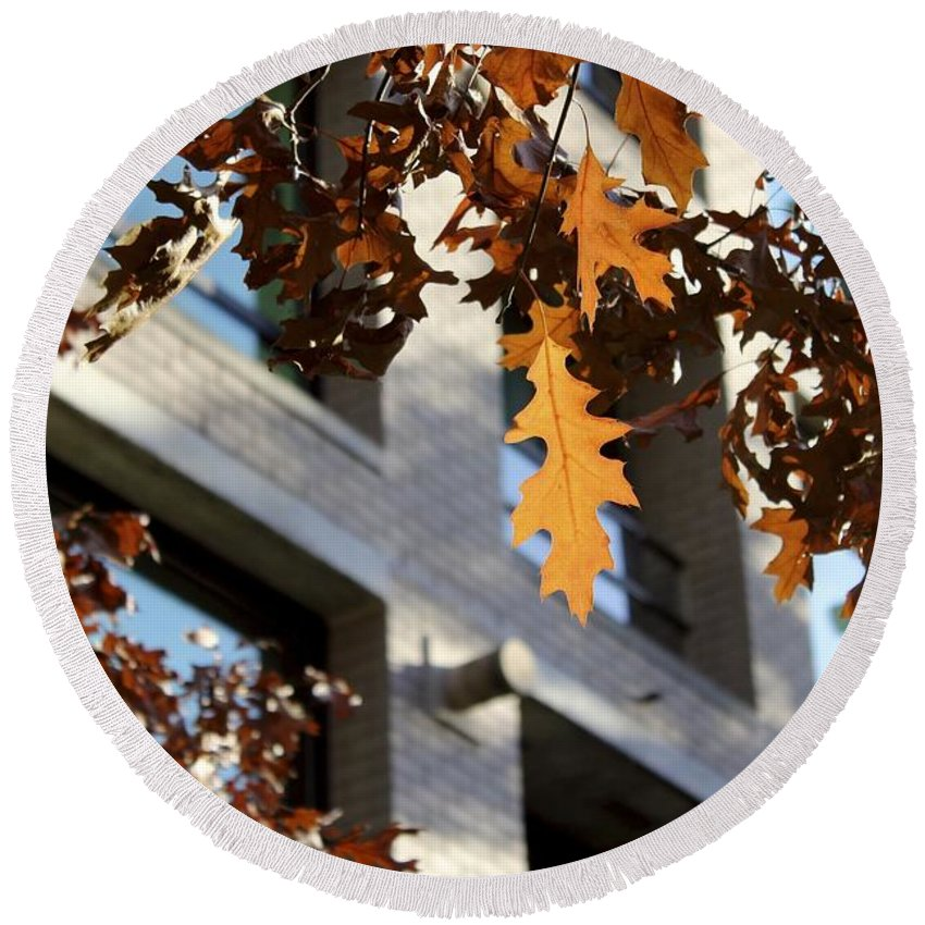 Oak Leaves Round Beach Towel featuring the photograph Fall In The City 3 by Alanna DPhoto