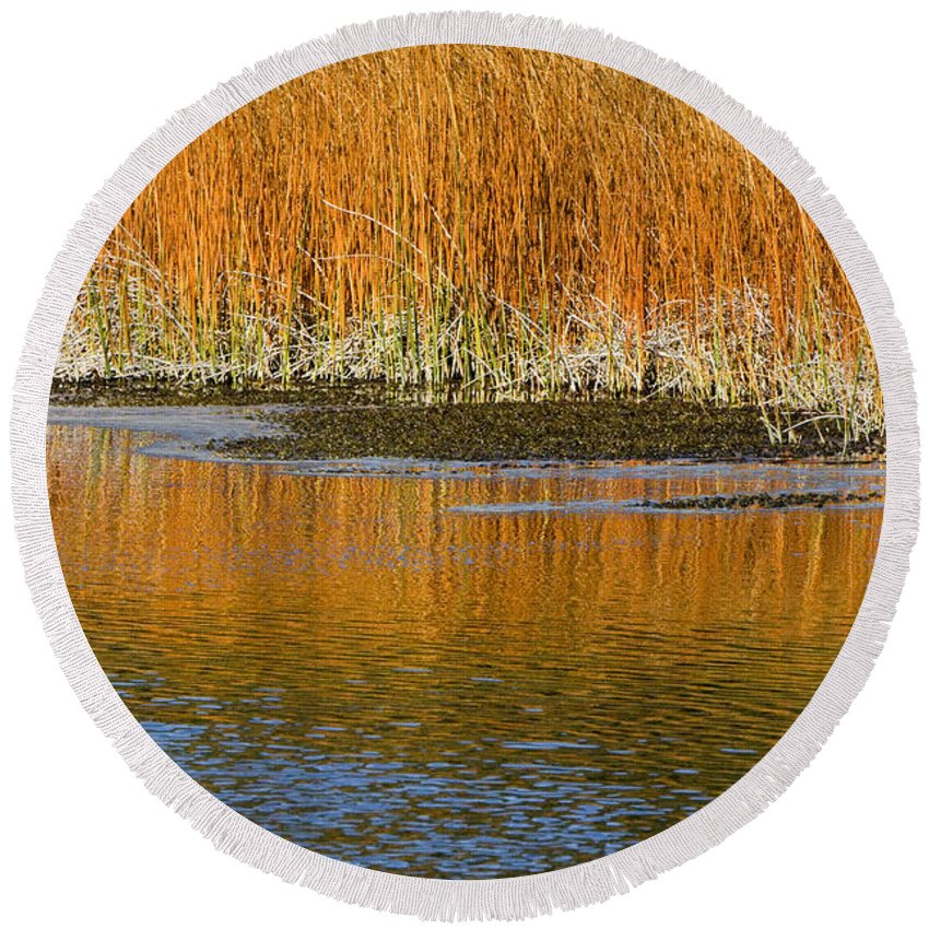Sandra Bronstein Round Beach Towel featuring the photograph Fall In Yellowstone National Park by Sandra Bronstein