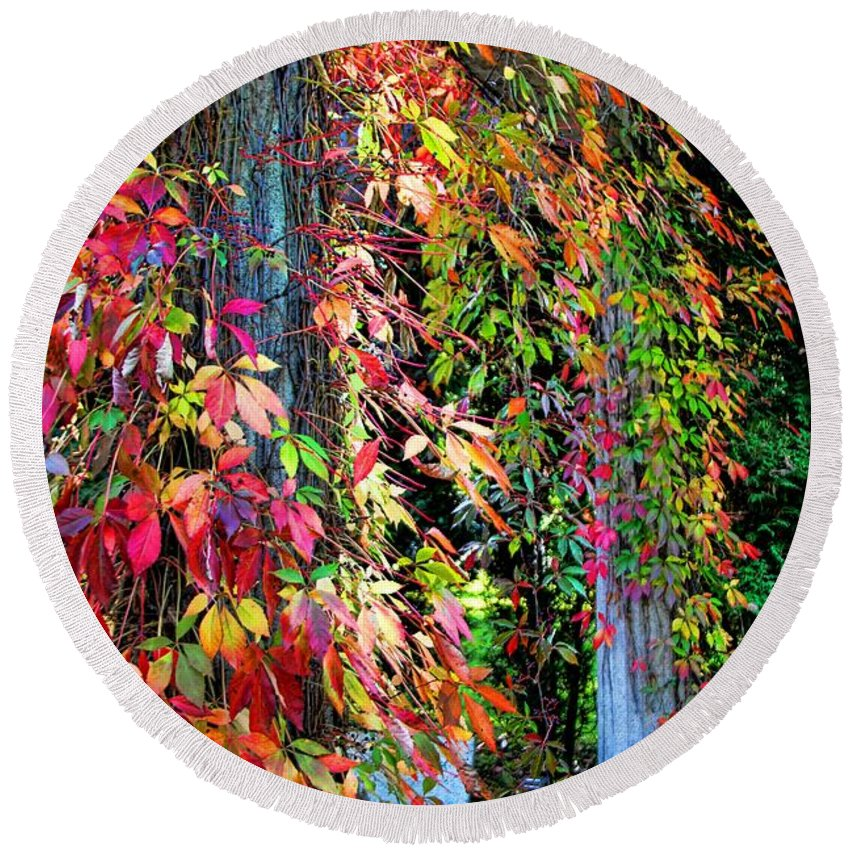 Fall Palette Round Beach Towel featuring the photograph Fall Palette by Mariola Bitner