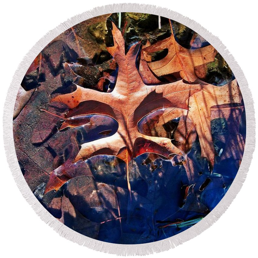 Leaves Round Beach Towel featuring the photograph Fallen Guardian by Christian Mattison
