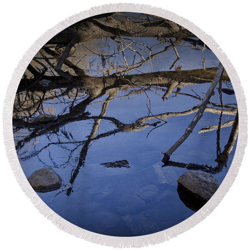 Art Round Beach Towel featuring the photograph Fallen Tree Trunk With Reflections On The Muskegon Rive by Randall Nyhof