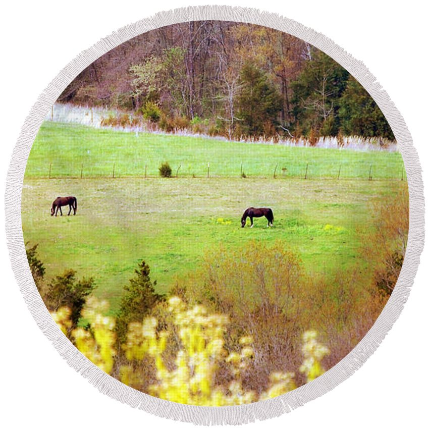 Landscape Round Beach Towel featuring the photograph Field Of My Dreams Horses by Peggy Franz