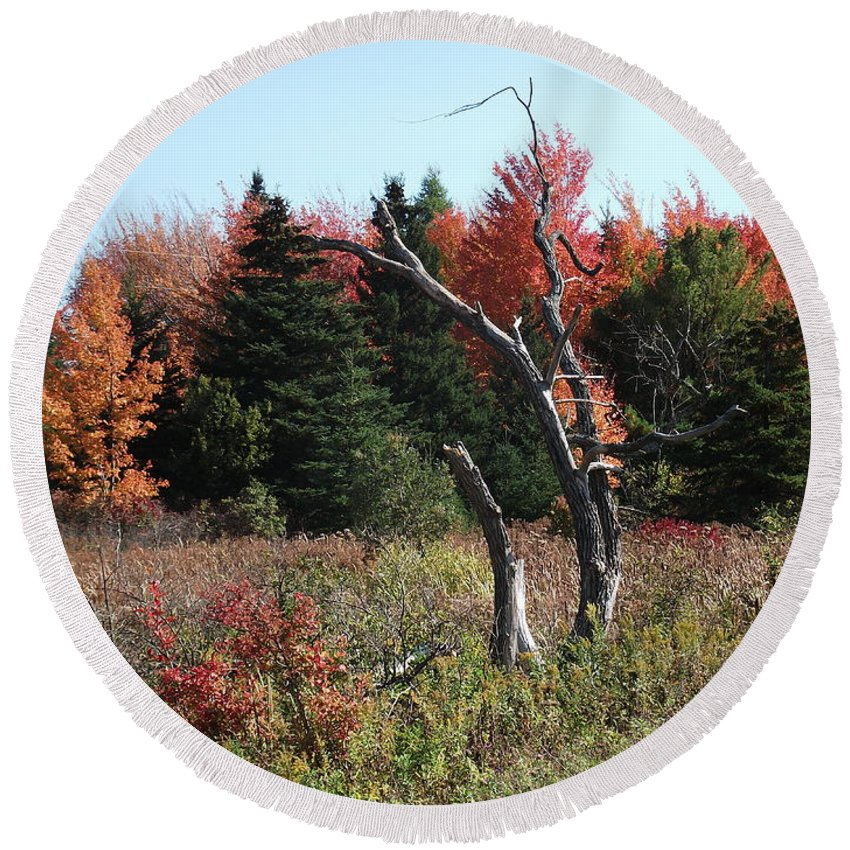 Autumn Round Beach Towel featuring the photograph Flames Of Autumn by Christian Mattison