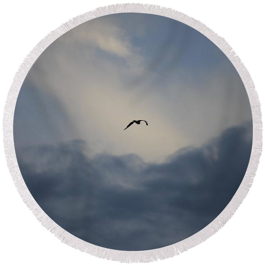 Seagull Round Beach Towel featuring the photograph Flight To Heaven by Penny Meyers