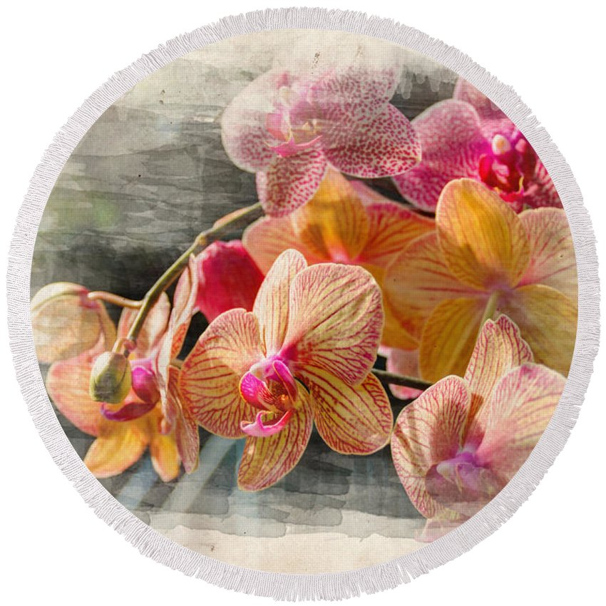 Beauty Round Beach Towel featuring the photograph Floral Beauty by Ricky Barnard