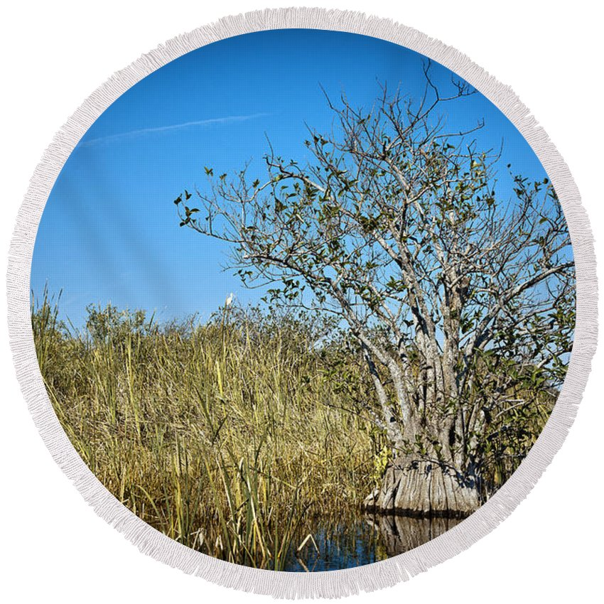 Grass Round Beach Towel featuring the photograph Florida Everglades 8 by Madeline Ellis