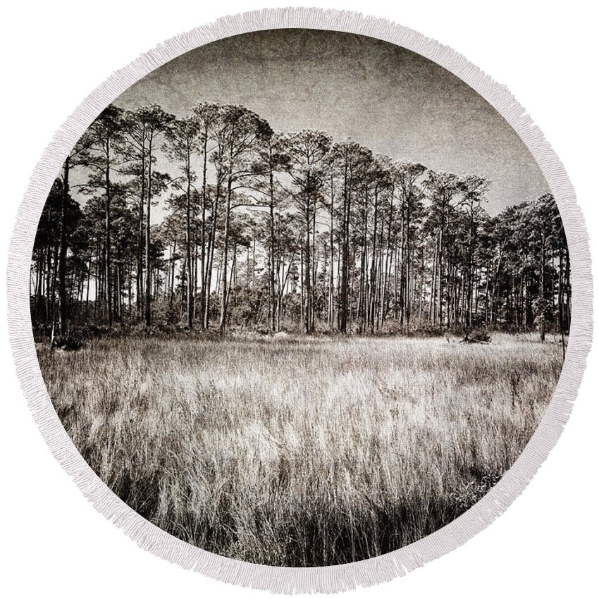 Art Round Beach Towel featuring the photograph Florida Pine 2 by Skip Nall