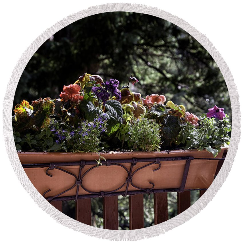 Flowers Round Beach Towel featuring the photograph Flower Box by Madeline Ellis