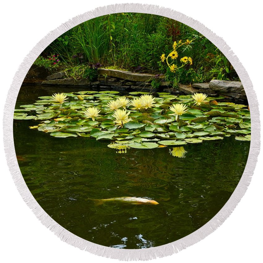 Koi And Waterlilies Round Beach Towel featuring the photograph Flowers And Koi by Byron Varvarigos