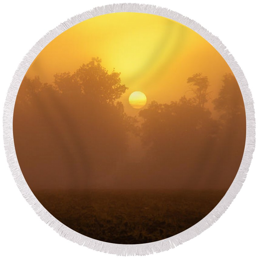 Fog Round Beach Towel featuring the photograph Foggy Sun by Robert Bales