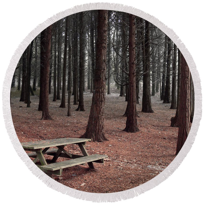Autumn Round Beach Towel featuring the photograph Forest Table by Carlos Caetano