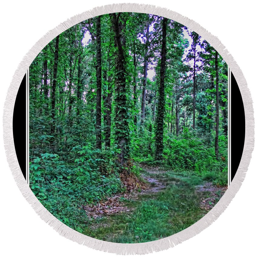 Nature Round Beach Towel featuring the photograph Forrest Trail by Debbie Portwood