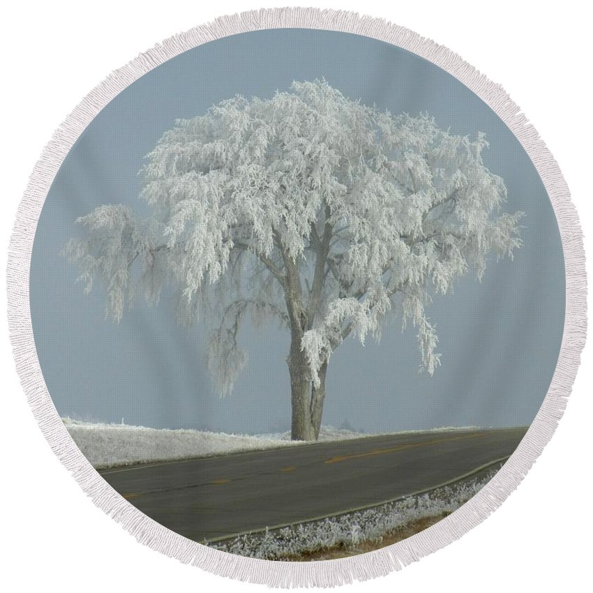 Tree Round Beach Towel featuring the photograph Frost On The Big Tree by Penny Meyers