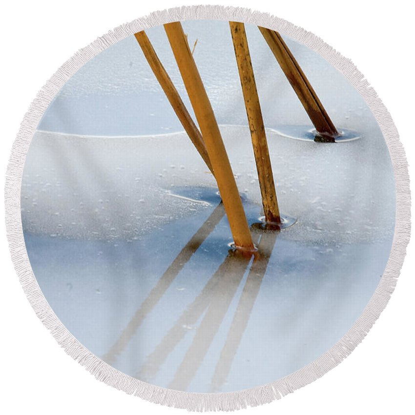 Ice Round Beach Towel featuring the photograph Frozen Lotus by Steve Stuller