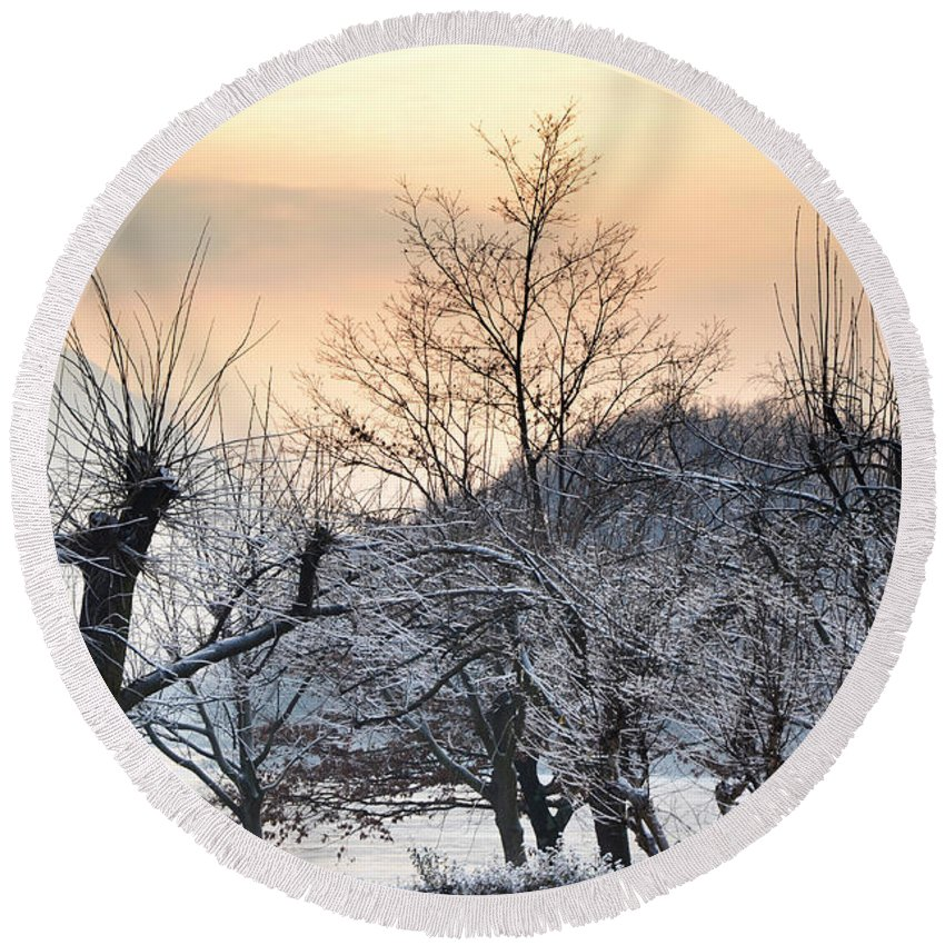 Frozen Round Beach Towel featuring the photograph Frozen Trees by Mats Silvan