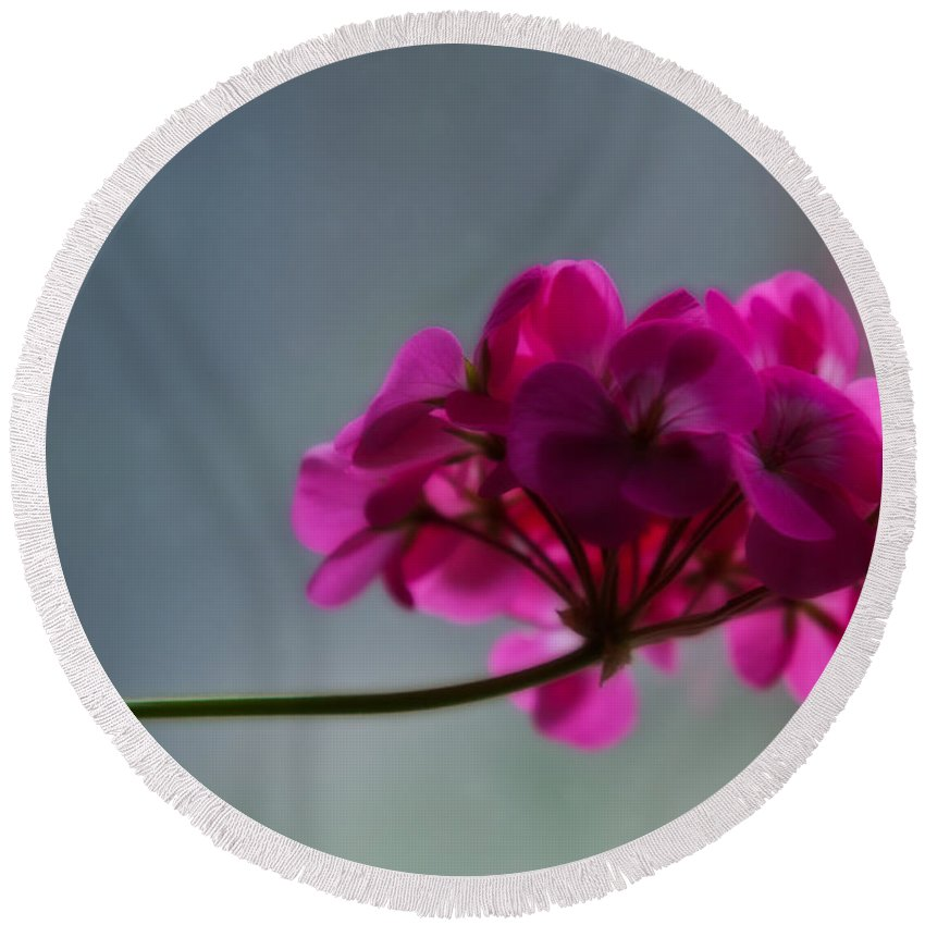 Flower Round Beach Towel featuring the photograph Geranium by Edward Peterson