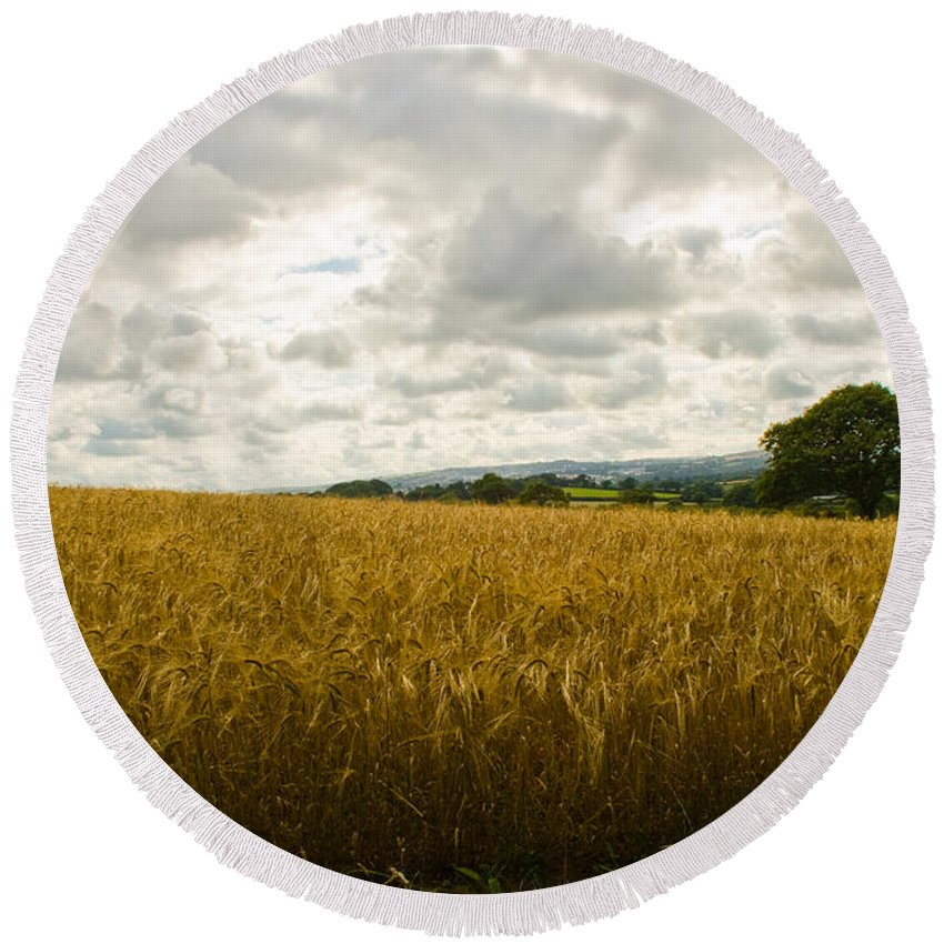 Mylor Bridge Cornwall Round Beach Towel featuring the photograph Golden Field by Brian Roscorla