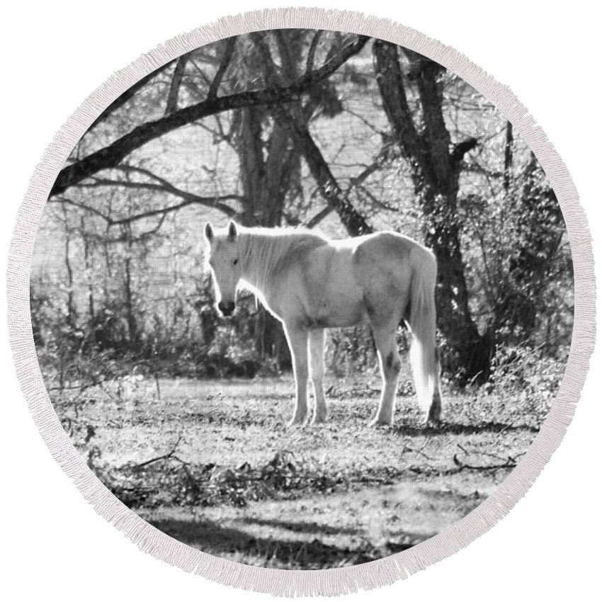 Horse Round Beach Towel featuring the photograph Gracefully Dirty by Karen Wagner
