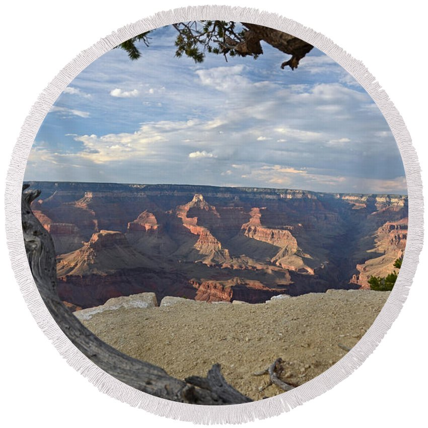 Grand Canyon Round Beach Towel featuring the photograph Grand Canyon Tree by Cassie Marie Photography