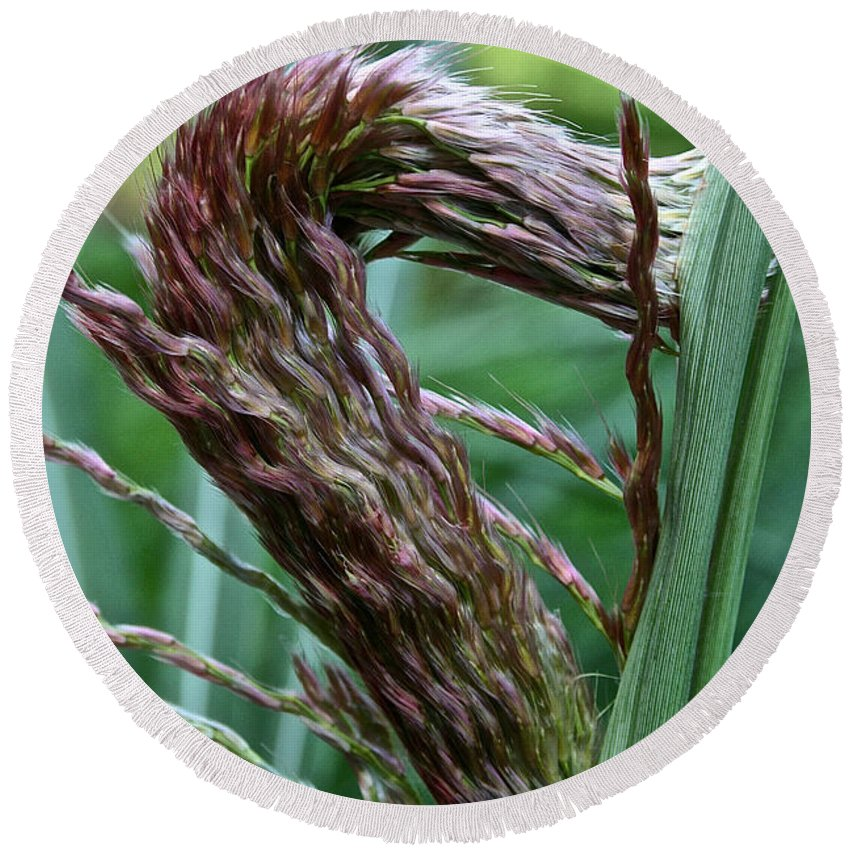 Landscape Round Beach Towel featuring the photograph Grass Worm by Susan Herber