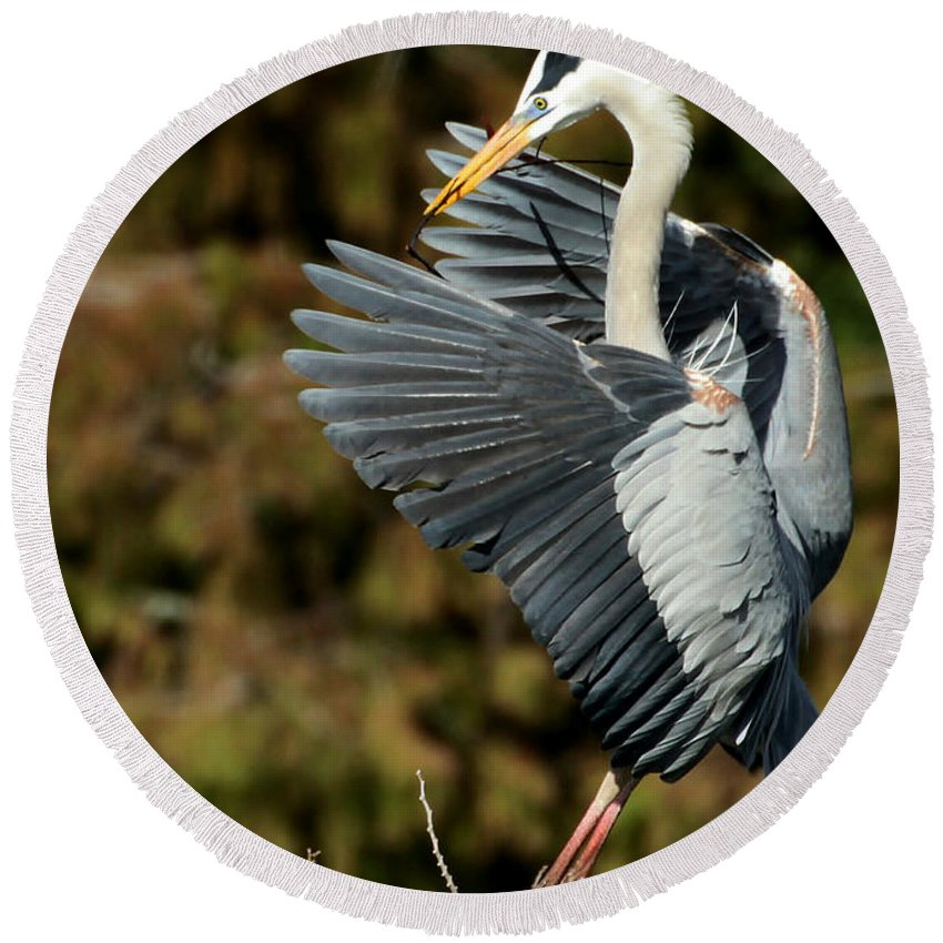 American Round Beach Towel featuring the photograph Great Blue Heron Landing by Sabrina L Ryan
