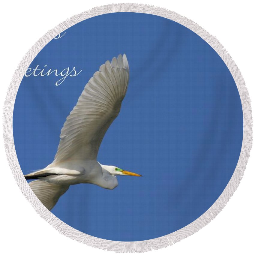 Great White Egret Round Beach Towel featuring the photograph Great White Egret Holiday Card by Sabrina L Ryan