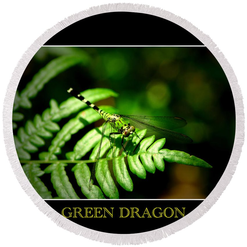 Dragonfly Round Beach Towel featuring the photograph Green Dragon 2 by David Weeks