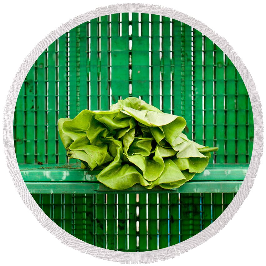 Lettuce Round Beach Towel featuring the photograph Green Greens by Lauri Novak
