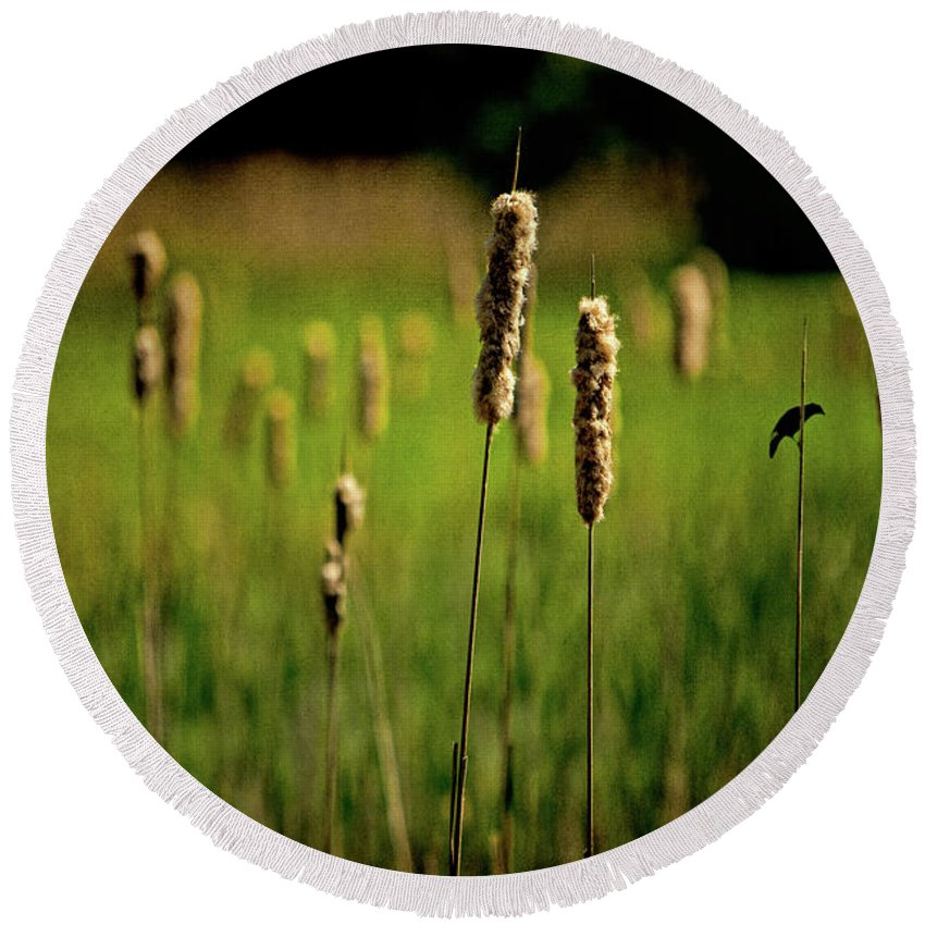 Rushes Round Beach Towel featuring the photograph Green Grow The Rushes O by Chris Lord