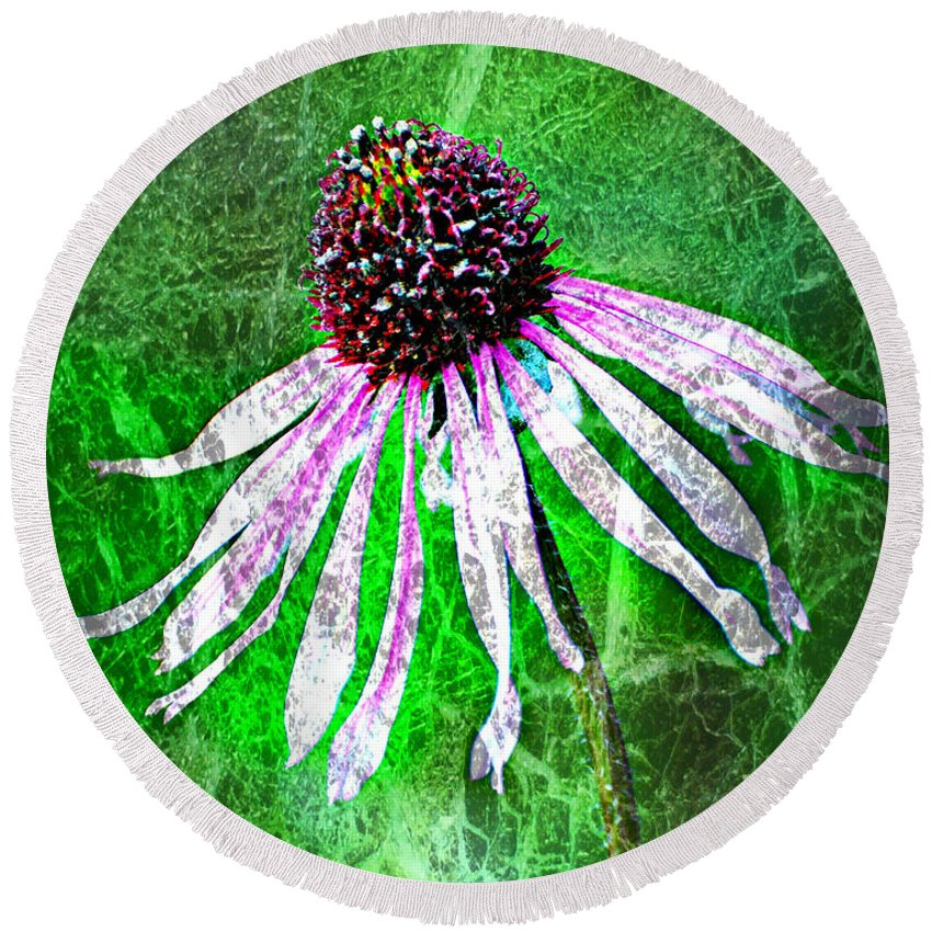 Flower Round Beach Towel featuring the photograph Gritty Coneflower by Marty Koch