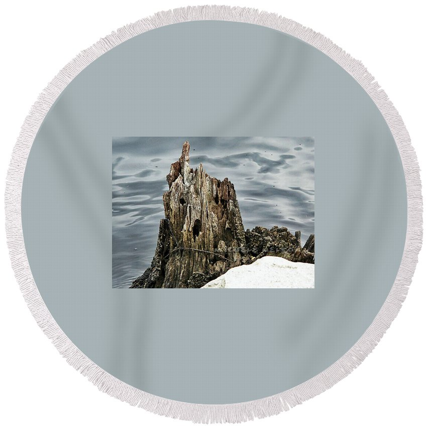 Round Beach Towel featuring the photograph Grumpy Stump by Michele Nelson