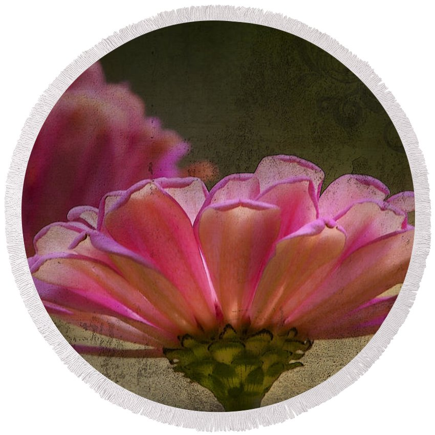 Zinnia Round Beach Towel featuring the photograph Grungey Pink Zinnia Delight by Kathy Clark